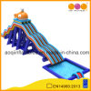 High Whale Water Slide with Big Pool (AQ01783)