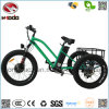 500W Customized 3 Wheel Fat Tire Electric Bicycle Pedal Go