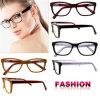 Latest Model Spectacle Frame Fashion Eyeglasses Optical Frame