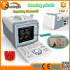 Ultrasound Veterinary Products Pregnancy Test Instrument