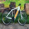 250W 36V Electric Mountain Bike