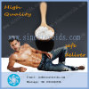 Sarms Bodybuilding Powder Sr9009 CAS 1379686-29-9 for Body Ftiness
