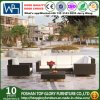 Rattan Furniture Outdoor Sofa (TG-JW39)