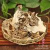 Dried Maitake Mushroom (Grifola Frondosa)
