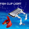 Hot Selling Intelligence Fish Clip Lights 13W 12V Touch Control Ultra-Thin Aquatic Plants Dedicated Clip Lights