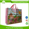 Reusable Eco-Friendly Promotional Plastic Woven Shopping Bags