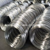 Galvanized Iron Wire Bwg-20
