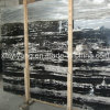 Silver Dragon Marble for Wall, Floor, Countertop (YQA-MS1007)