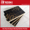 Tecon Cheap Film Faced Shuttering Plywood