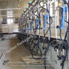 Dairy Cow Milking Hall Fishbone Milking Parlor with Automatic Cluster Remover