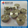 Tungsten Carbide Drawing Dies with Grinding Type From Lizhou