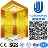 Home Hydraulic Villa Elevator with Italy Technology (RLS-251)