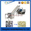 Experienced Garlic Peeling Machine China Supplier