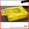 Plastic Injection/Poultry Crate/Bird Case Molding