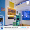 Color Float Glass for Decorative Glass/Building Glass