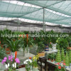 New PE Shade Net Cloth with UV for Agricultural Vegetalbe Greenhouse (YHZ-SDN03)