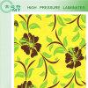 Kitchen Countertop/Formica Laminate Sheets/Building Material (HPL)