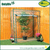 Onlylife Domestic PE Fabric Foldable Greenhouse for Plants