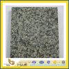 Jiangxi Green Granite Flooring Tile for Sale (YQA-GT1033)