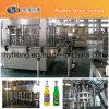 Turkney Project for Glass Bottle Soda Water Bottling Line
