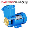 PS126 Best-Selling Electric Water Pump with Big and Middle Pump Body
