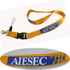 Hotsale Fashion Design Colorful Polyester Neck Lanyards with Custom Logo 49