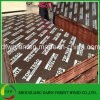 2017 Hot Sale Cheaper Phenolic Glue Brown Film Face Plywood