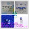 Healthy 99% Sarms 401900-40-1 Muscle-Building Andarine S4 Gtx-007