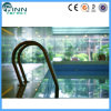 Swimming Pool Stainless Steel Different Steps Pool Ladder