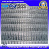 Galvanized Welded Wire Mesh Panel Using in Fence with (CE and SGS)