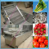 Bubble Type Industrial Vegetable Washing Machine