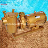 Self-Priming Centrifugal Commercial Pool Pumps