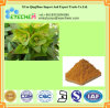 Euphorbia Lathyris Spurge Extract Powder