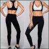 Fitness Clothing Sports Bra and Shorts Set Bulk Buy From China