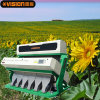 Automatic CCD Sunflower Seed Color Sorter Equipment, Vision CCD Color Sorter