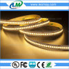 New Product SMD3528 19.2W/m 240LEDs 24V Flexible LED Strip