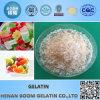 Pharmaceutical Gelatin