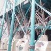 120t Flour Mill Plant Making Bakery Flour Semolina Atta Maida Suji Farina