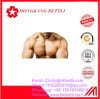 Anabolic Oxandrol Anava 53-39-4 Steroid for Muscle