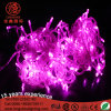 220V Steady on LED Multi-Color Light String for Indoor and Outdoor Use