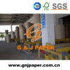 Remium Crown Testliner Paper for Carton Production with Good Price