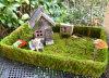 Pure Handmade Moss Tray Planter