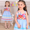 2013 New Cotton Children Dresses (9100#)