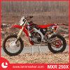 250cc Mini Motorcycle