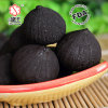 Retail Transparent Bottle Packed China Fermentedblack Garlic 100g