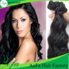 Fashion Human Hair Style Remy Virgin Hair Wig