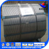 China Supply Calcium Silicon Coerd Wire