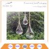 Hot Selling Hanging Succulent Glass Garden Planter