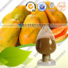 High Qualit 100% Natural Papaya Powder Concentrate
