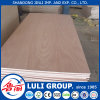 12mm Plywood Board Prices with Hardwood Core and WBP Glue From China Factory